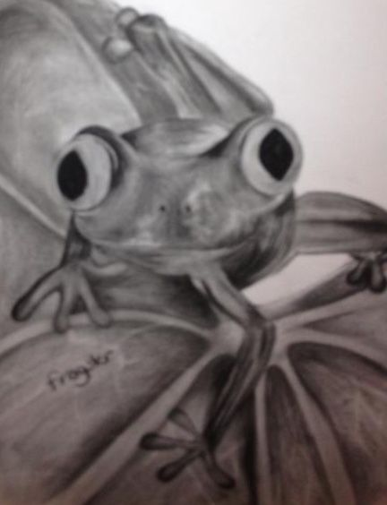 'Froggie' Charcoal art by 'frogster'