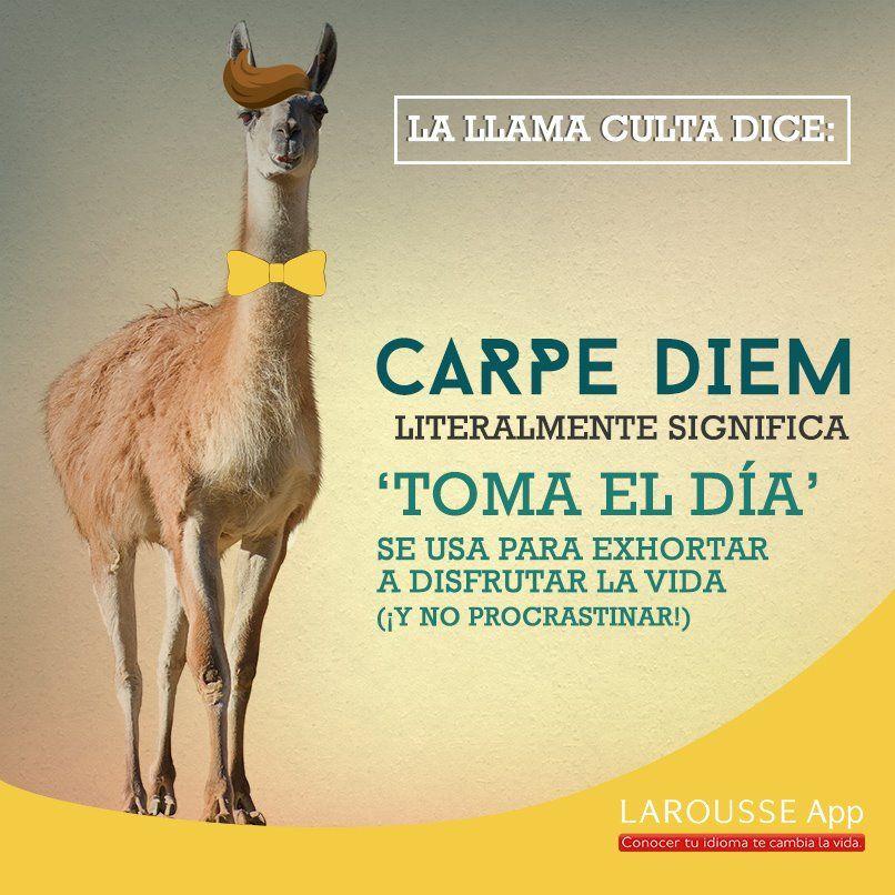 Carpe Diem Palabras De Vocabulario Palabras En Espanol