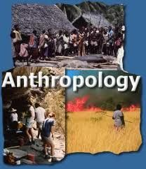 Cultural anthropology essay topics
