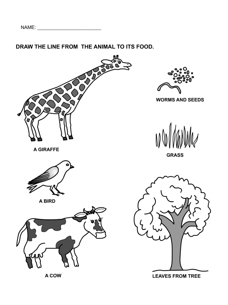 Printable Worksheets animals printable worksheets : food and shelter of animals worksheet - Google Search | teaching ...
