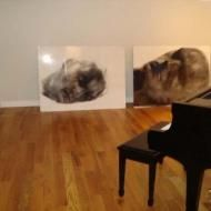 Heads, Lorene Taurerewa at The End Artspace, New York