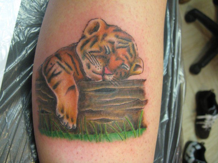 Cute Baby Tiger Tattoos Clipart Forearm Flower Tattoo Tiger