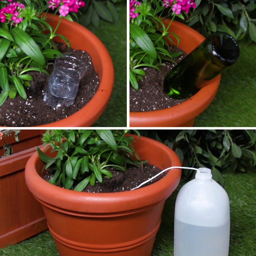 3 Self Watering Hacks For Your Plants
