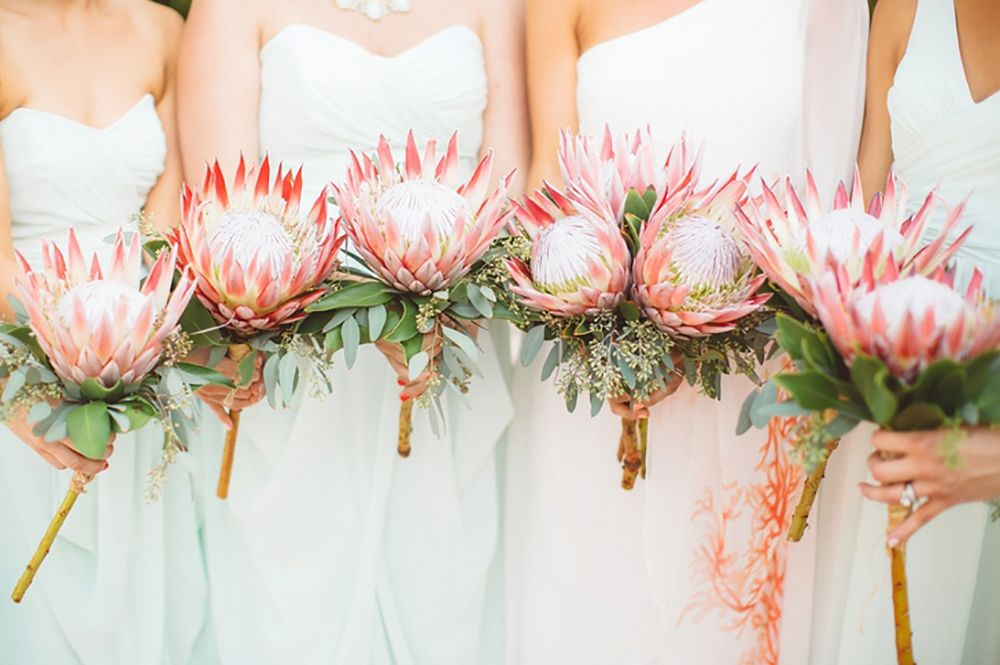 King Protea And Eucalyptus Bouquets See Other Bridesmaid Holding The King Protea And Eucalyptus Bouquet Protea Wedding Wedding Flower Guide Bridesmaid Bouquet
