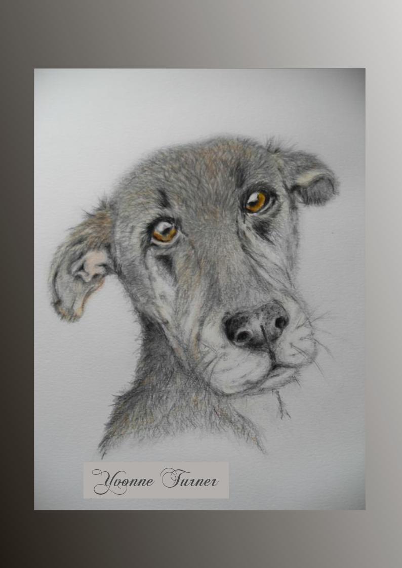 Heinz 57 Moose art, Art, Moose