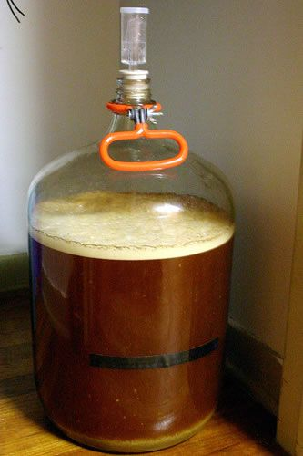 Home Brew Beer Recipes For Beginners Which Recipe To Start Pick A Kit With Steeping Grains And Dme It W Home Brewing Beer Beer Brewing Recipes Beer Recipes