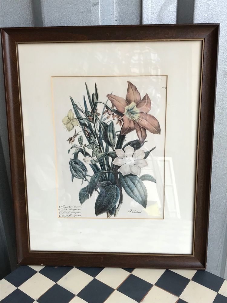 FRAMED FLOWER PICTURE MATTED 18\