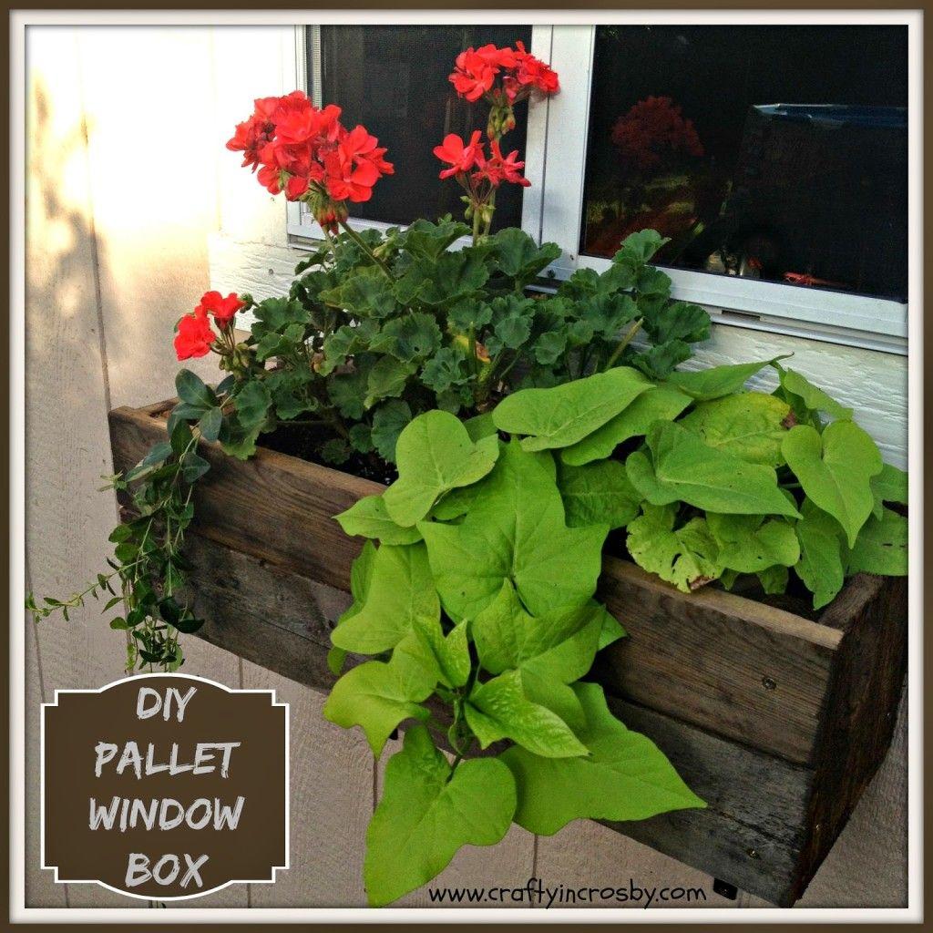 Build Flower Window Box Pallet Diy Home