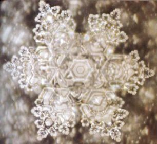 'Love' water crystal photo by M. Emoto