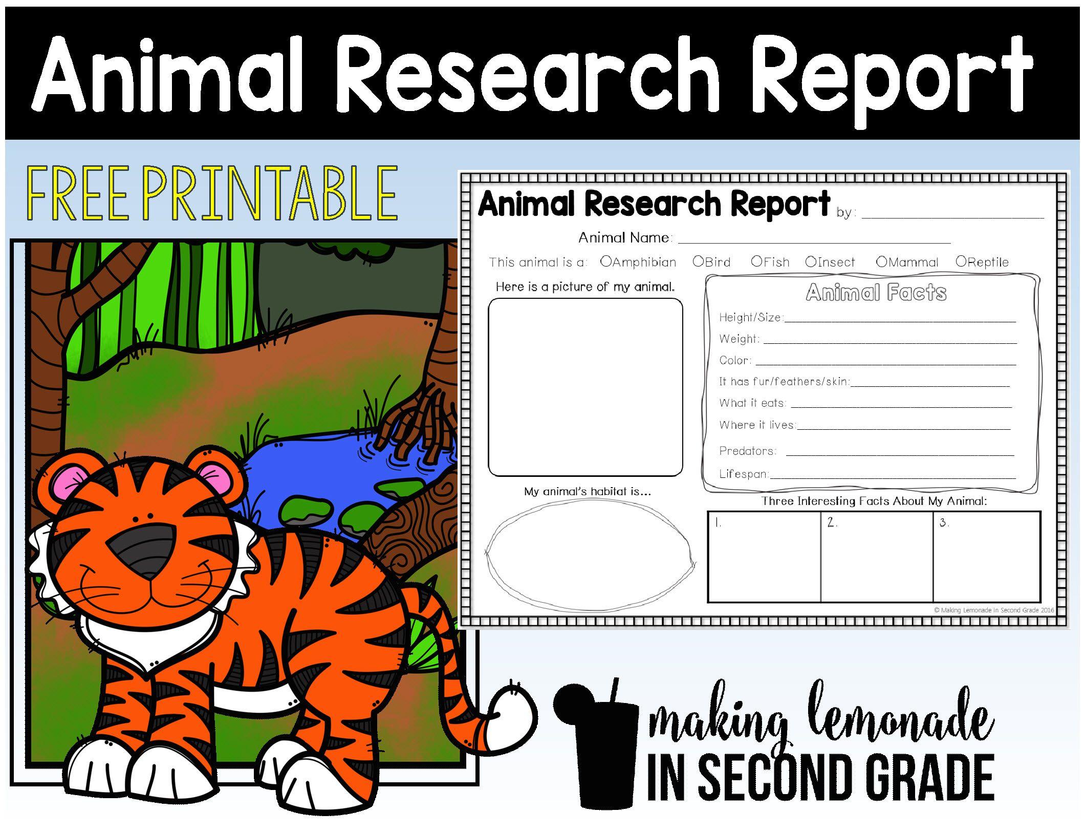 Animal Research Report Printables