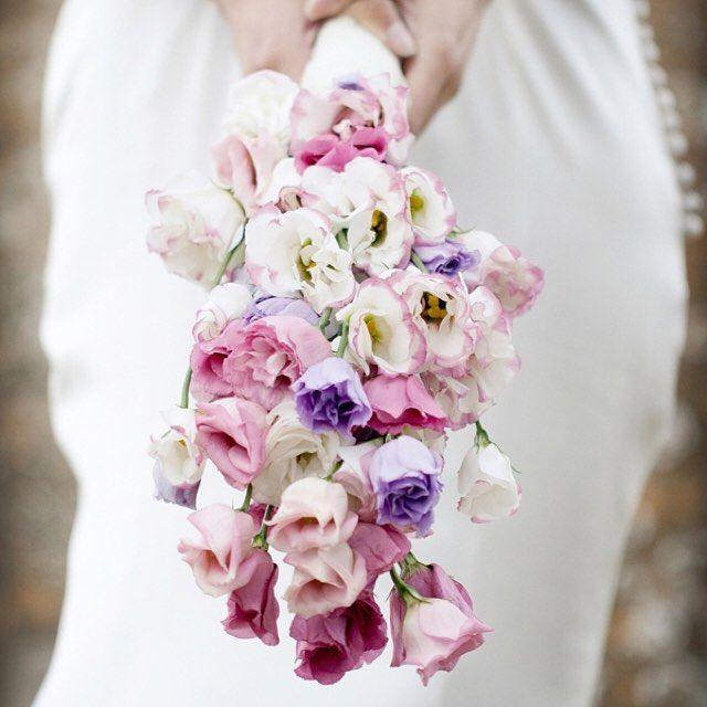 Names Of Purple Flowers For Wedding: Purple Wedding Flowers, Wedding