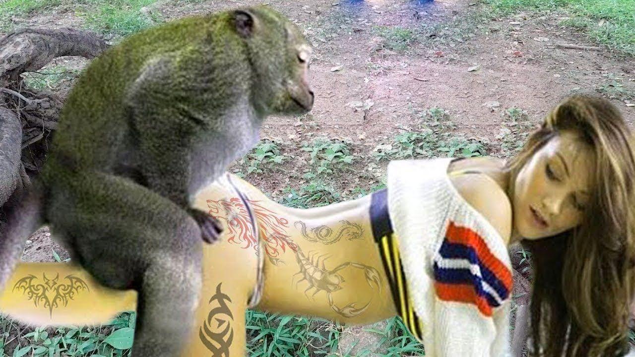Bayon Monkey Meeting Tourist Girl Funny Monkey With Girl Near Wild