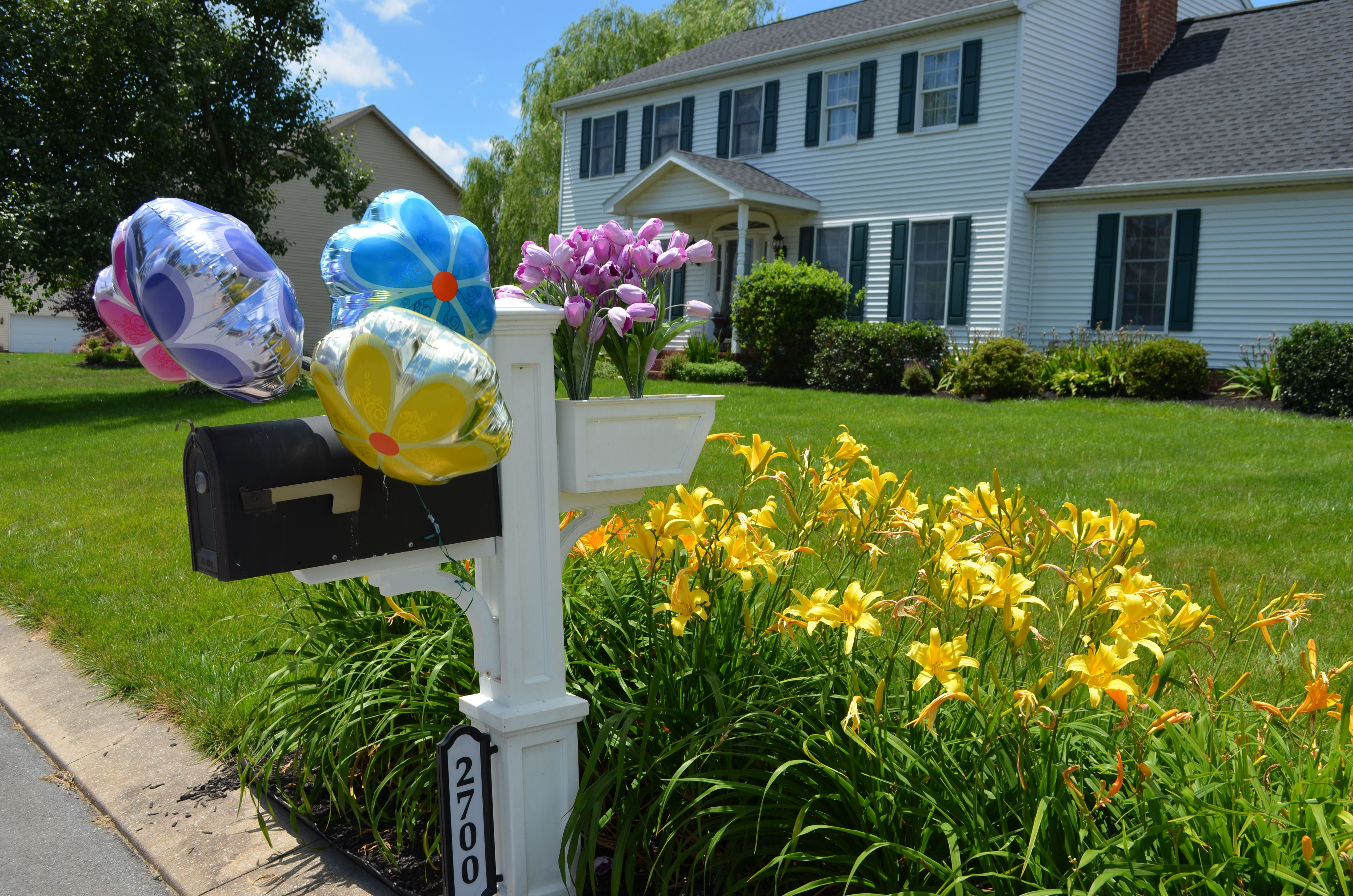 Mailbox With Birthday Flower Balloons Love Dollar Tree 1 Best Price In Town