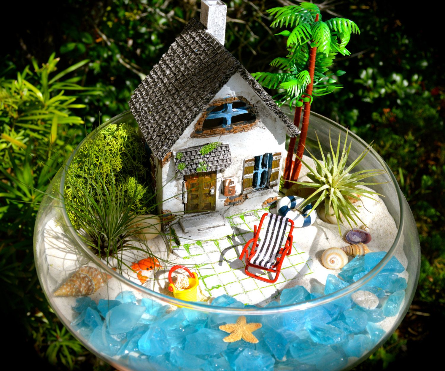 Gift Plants And Plant Ideas Perfect Container Garden For You: Beachside Cottage Terrarium Kit