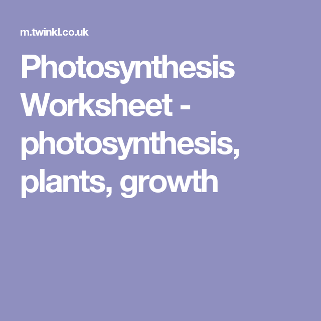 Photosynthesis Worksheets Middle School