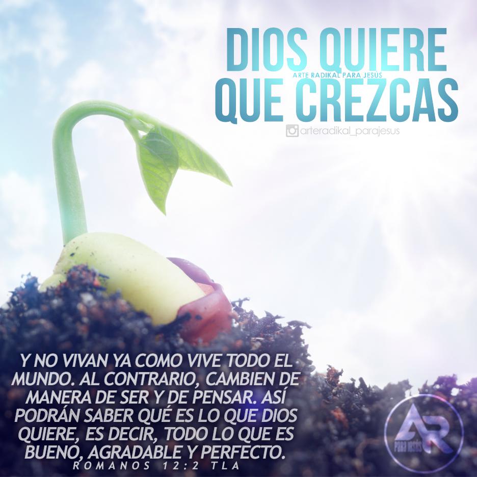 In bueno hermanos company we can find great variety of types of 3 - Rom 12 1 Deberes Cristianos As Que Hermanos Os Ruego Por Las Misericordias