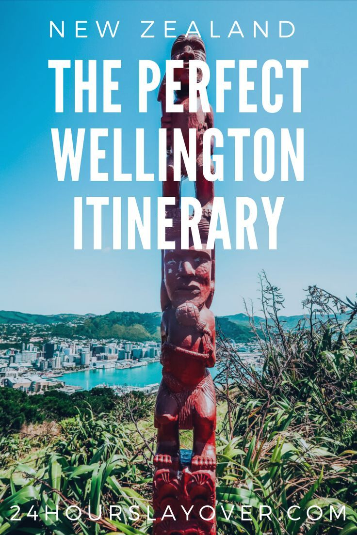 One Day in Wellington, NZ Walking Itinerary! 24 Hours