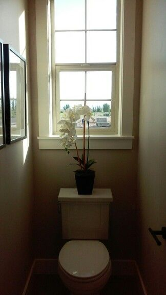 Small Toilet Ideas With Window