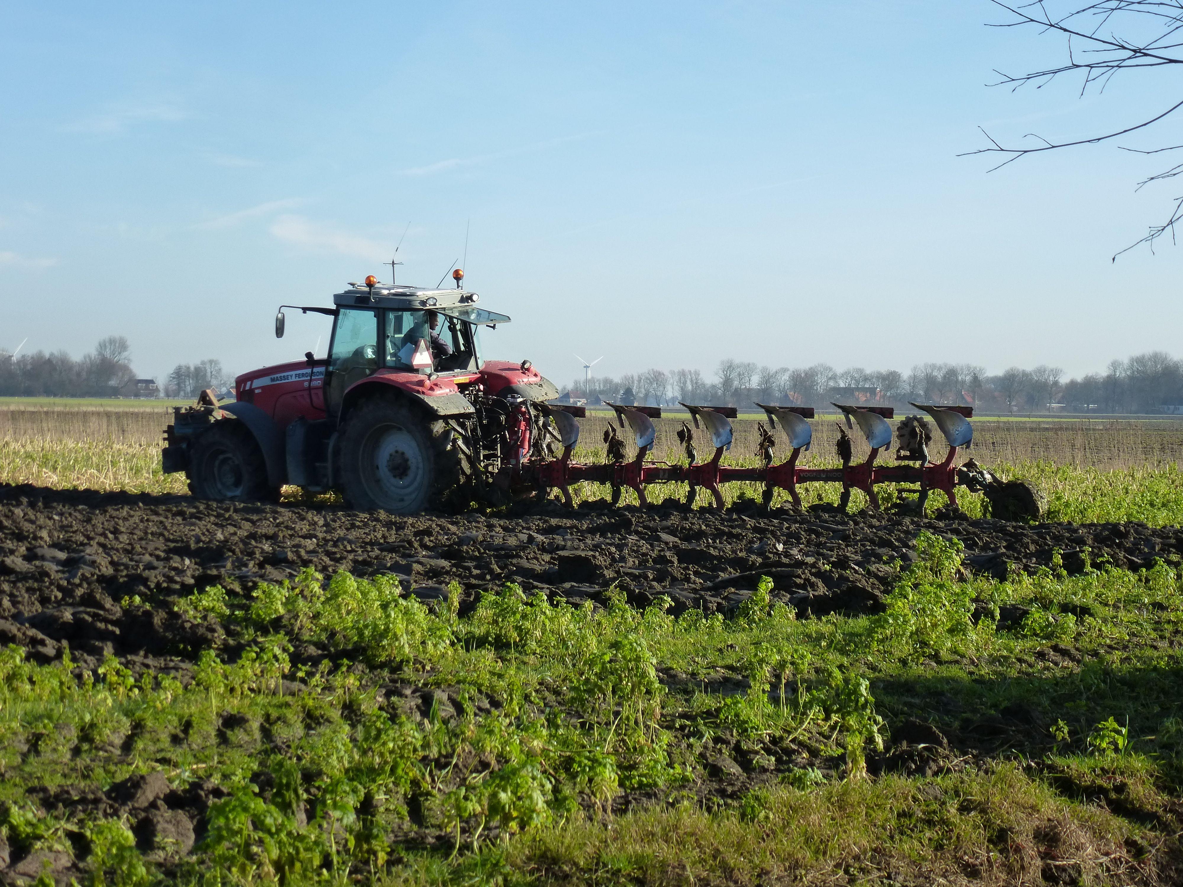 Landbouw Pieterburen Landbouw