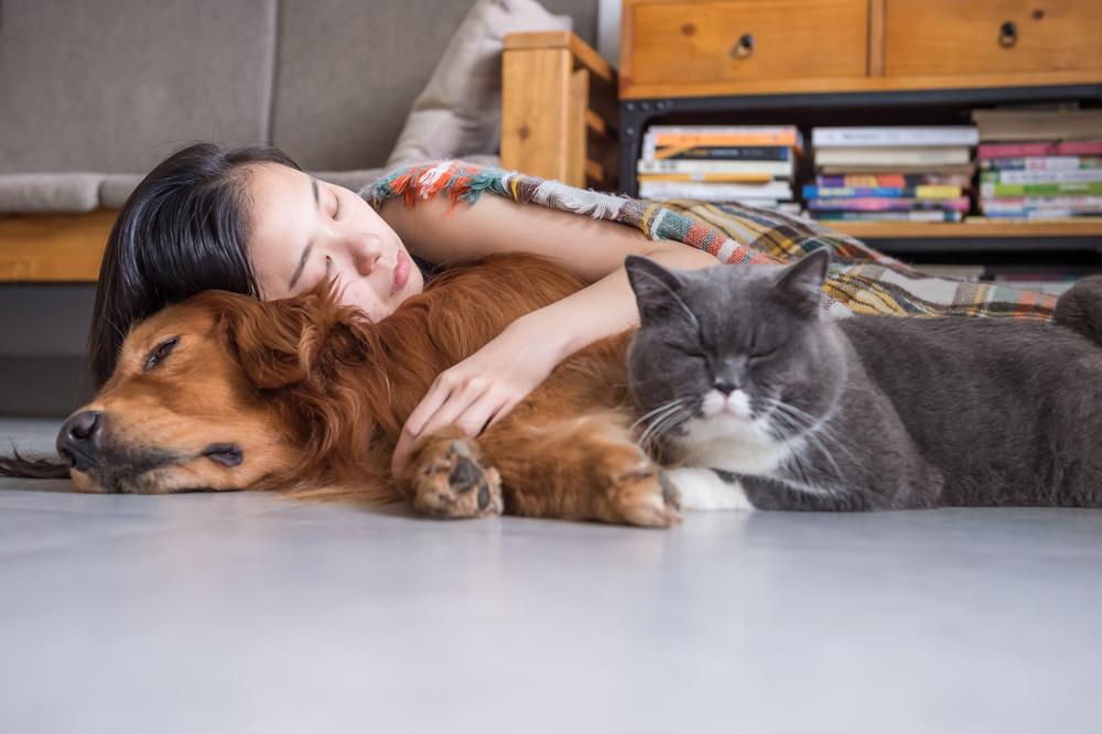 Girls Sleep Cats Dogs Dog cat, Emotional support animal