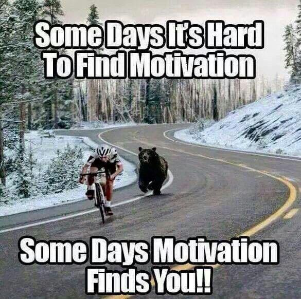 Funny Memes For Running : Some days it s hard to find motivation