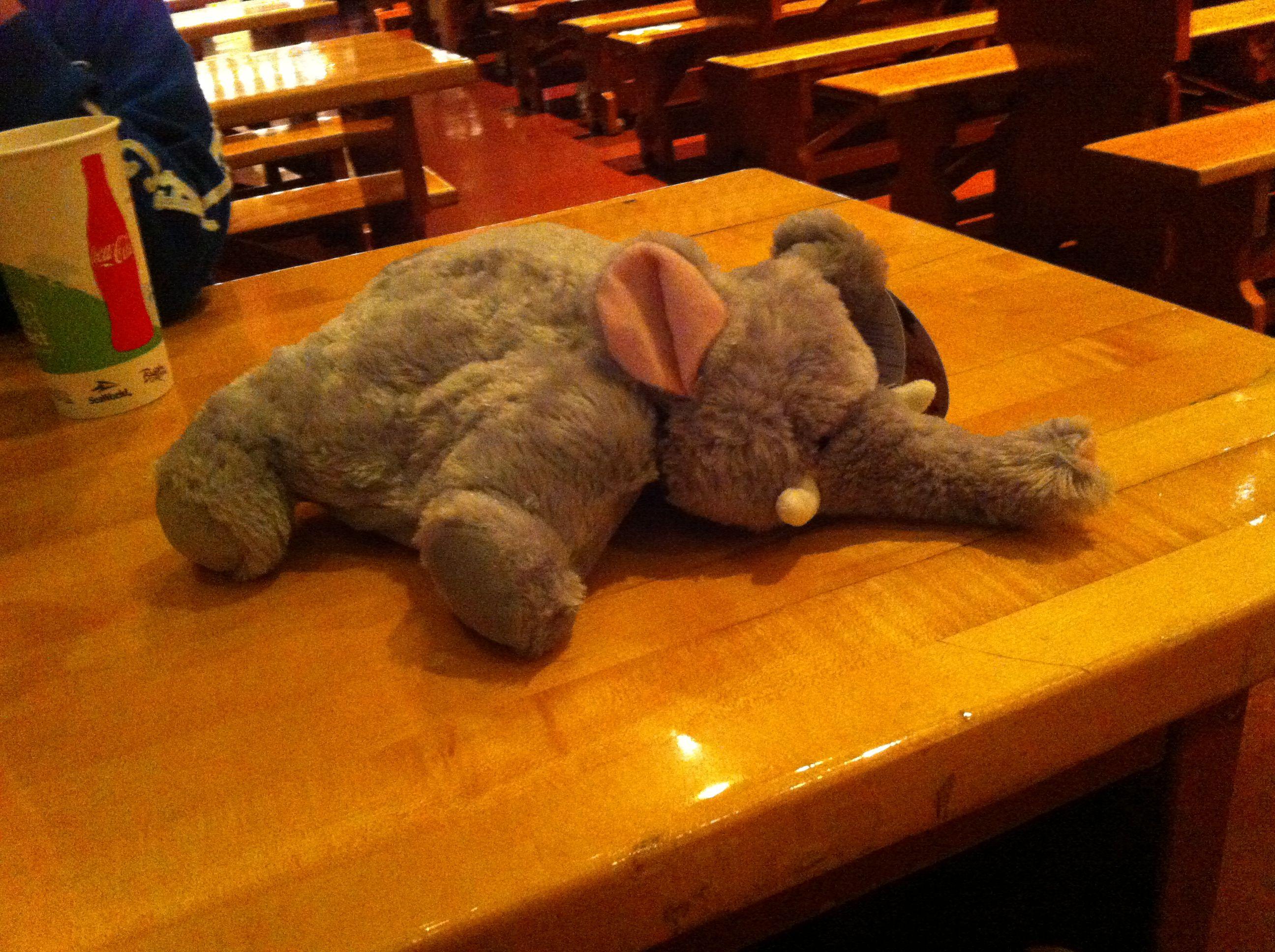 just won a mini elephant pillow pet from Busch gardens, OMGGGGG ...