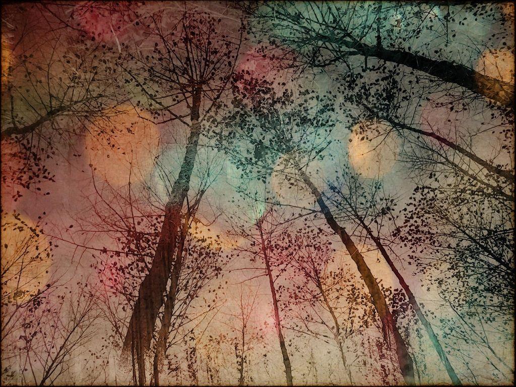 Deja Vu landscape XLVII by ForrestBump.deviantart.com on @deviantART