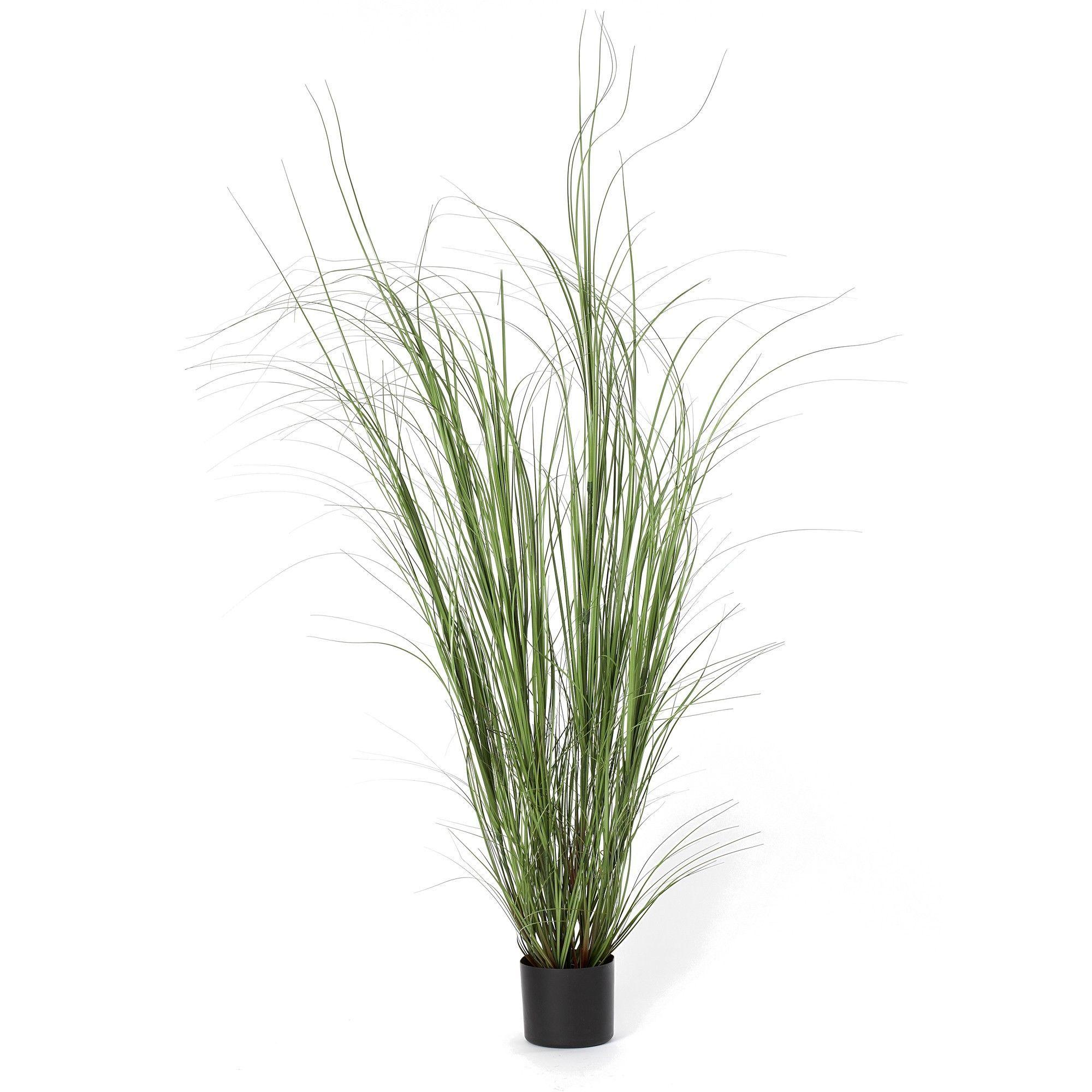 Fleur pvc grass plant in growers pot set of 6 rend for Dekor von zierpflanzen