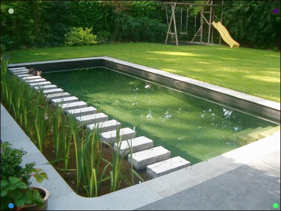 Stepping Stones Across A Pond Adamchristopherdesign Co Uk Swimming Pond Water Features In The Garden Natural Swimming Ponds