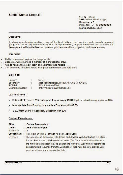 Resume Template For Experienced Professional Professional Profile
