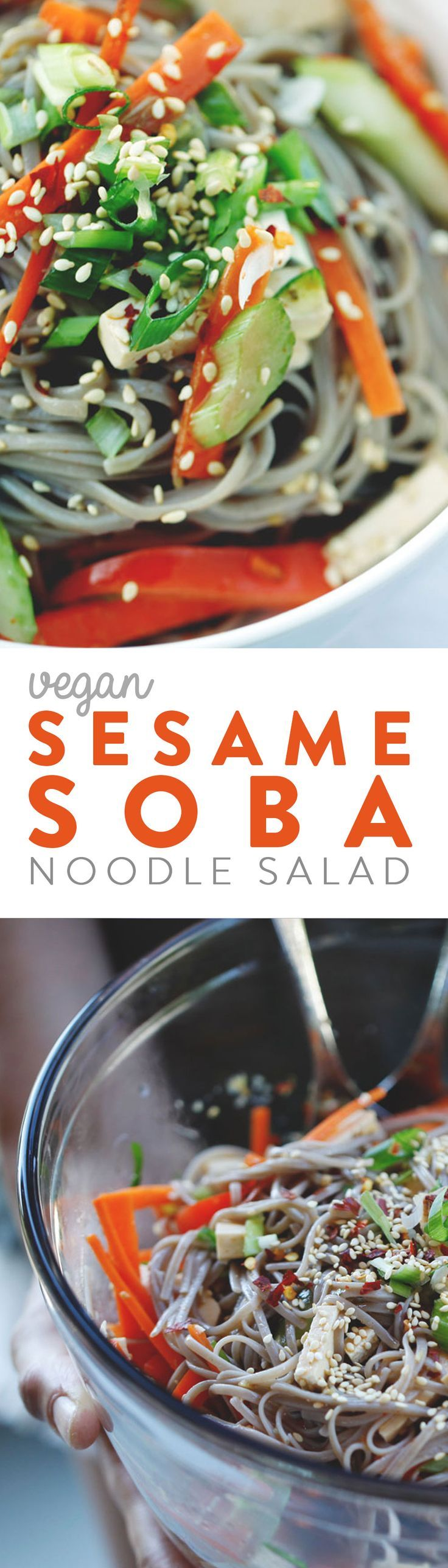 A satisfying soba noodle dish loaded with fresh vegetables, and tossed in a savory sesame ginger sauce. Quick to prepare and tastes great. The buckwheat noodles even keep well for lunch the next day. Vegan & Gluten Free.