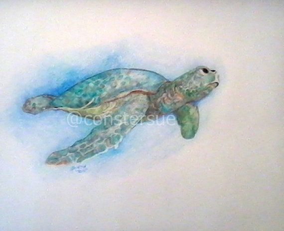 sea turtle color pencil drawing 14 x 17 unframed and by constersue, $15.00