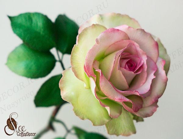 Мастер класс интерьерной розы из фоамирана
