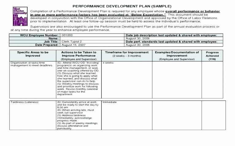 Diversity and Inclusion Plan Template Inspirational