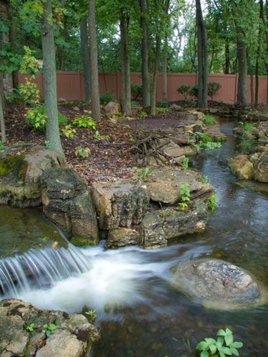 This Is What a Million Dollar Backyard Pond Looks Like | Back garden ...
