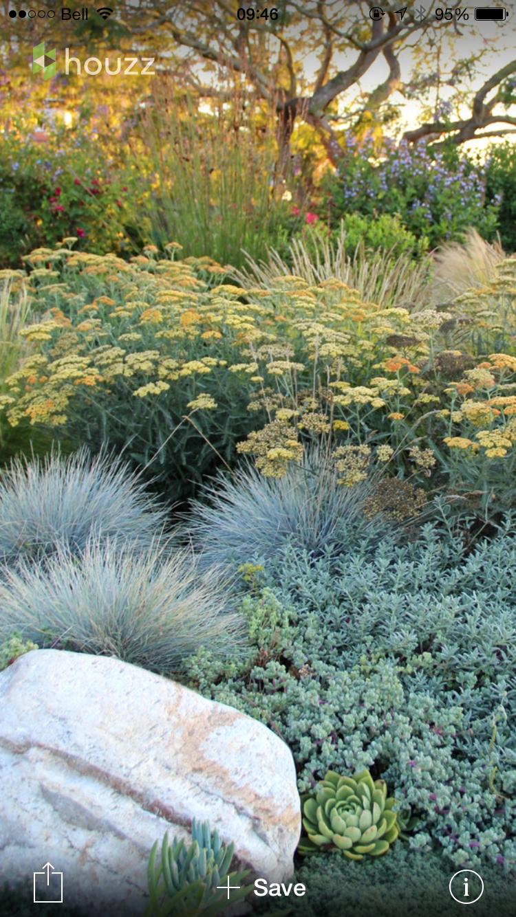 Effective layering garden pinterest gardens landscaping and dry garden workwithnaturefo