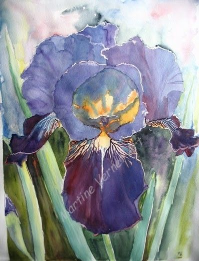 Martine Vernet Iris Aquarelle 40x50cm Art Floral Peinture