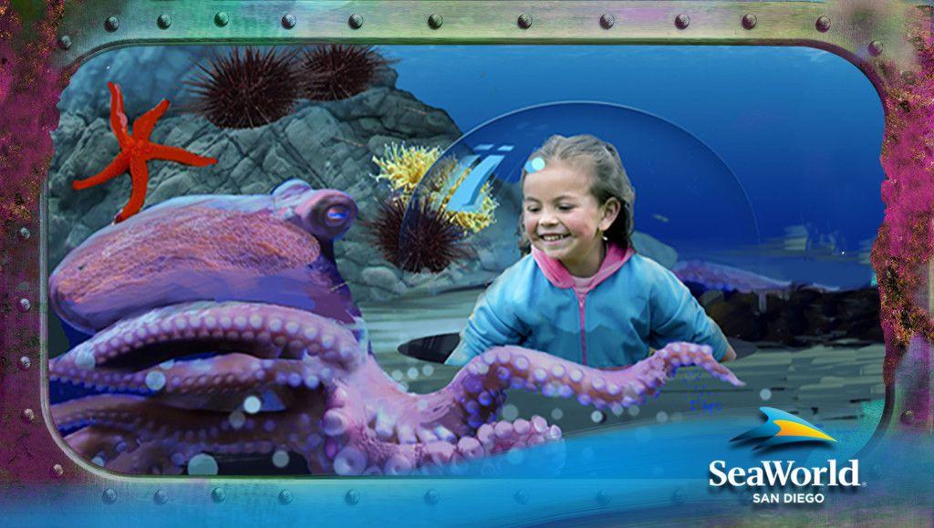 SeaWorld San Diego Ocean Explorer