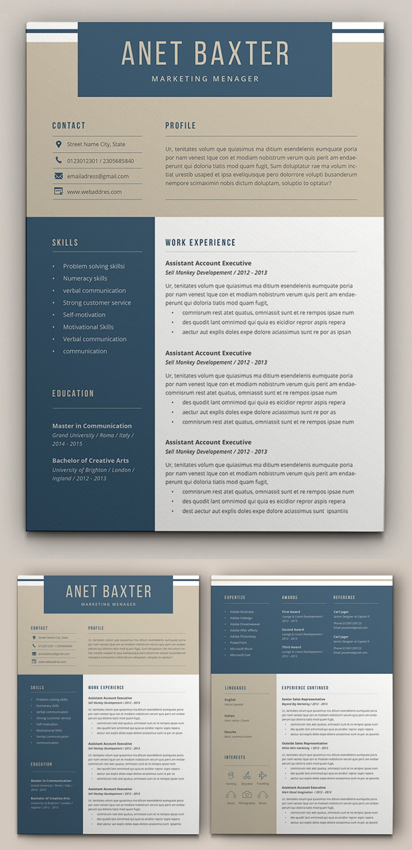 Professional Resume Template Design in 2020 Resume