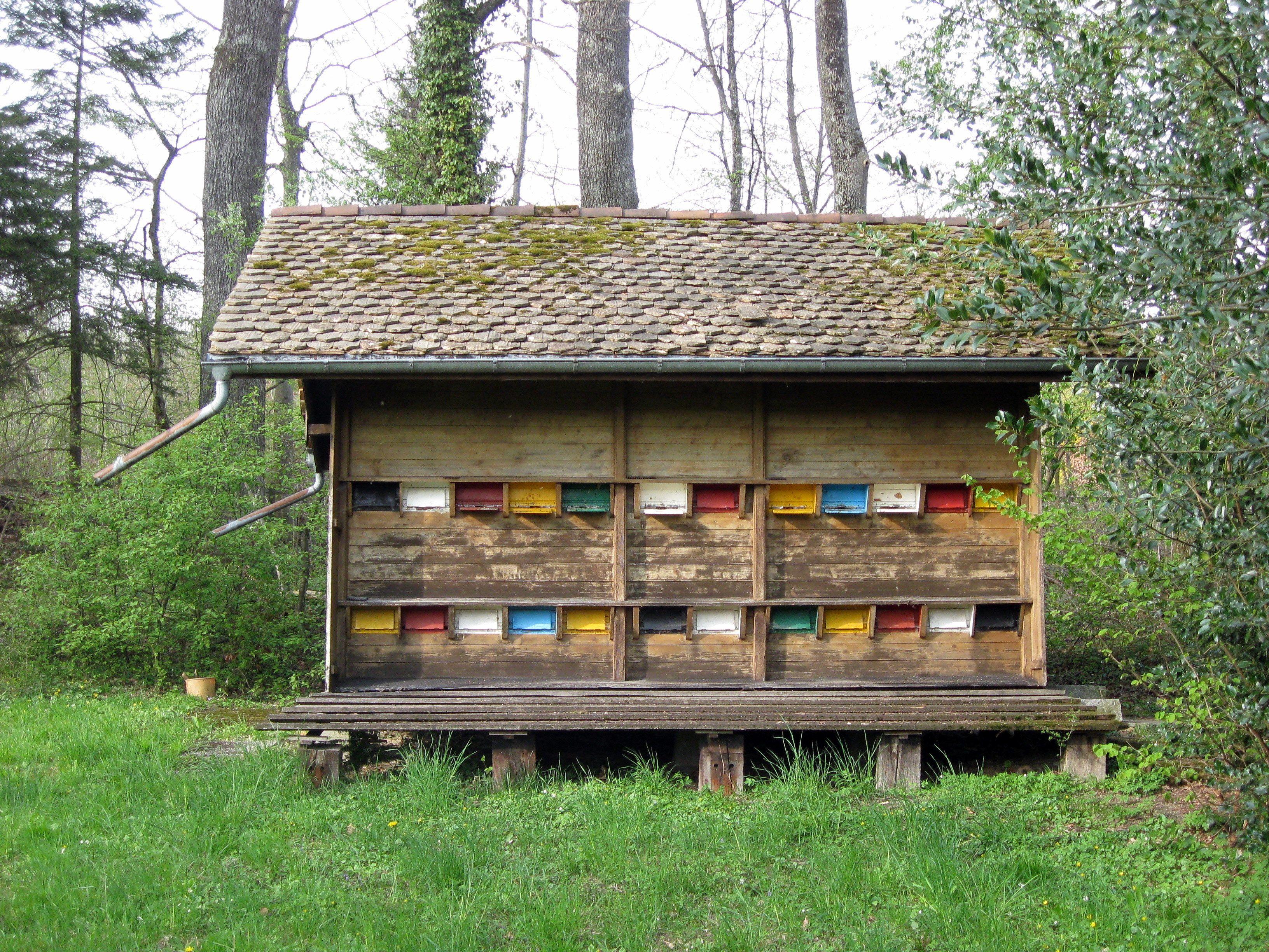 Swiss Bee House Bee Houses Bee House Bee Keeping
