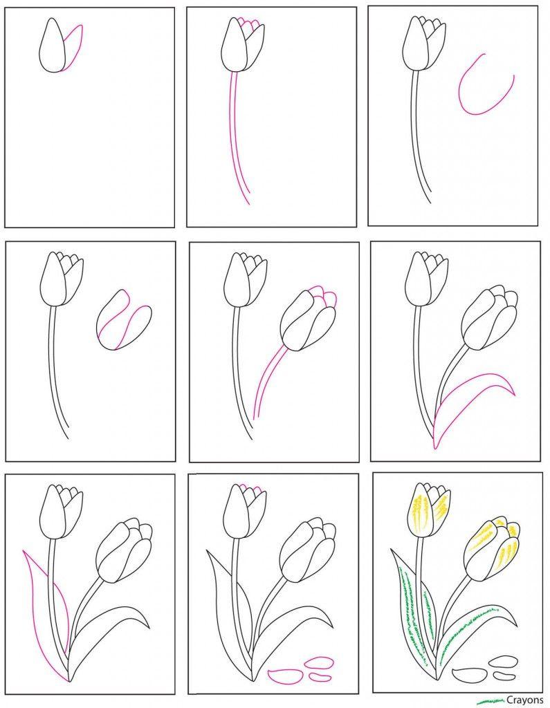 Картинки какие цветы занесены в красную книгу том