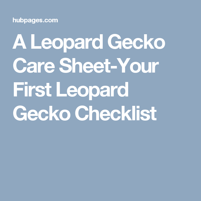 A Leopard Gecko Care Sheet Your First Checklist
