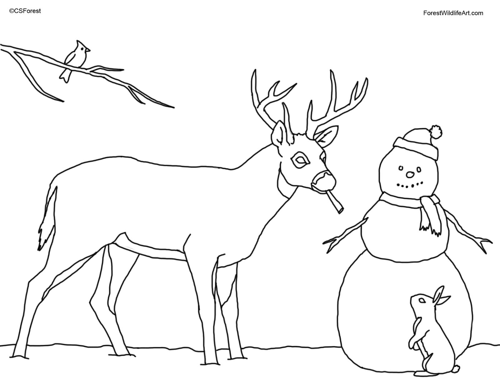 Snowman Coloring Pages | ... Wildlife Art: Coloring Book Page for ...