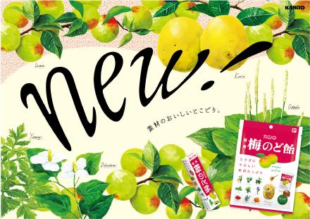 発売25周年 カンロ健康梅のど飴がリニューアル のど飴 梅 カンロ