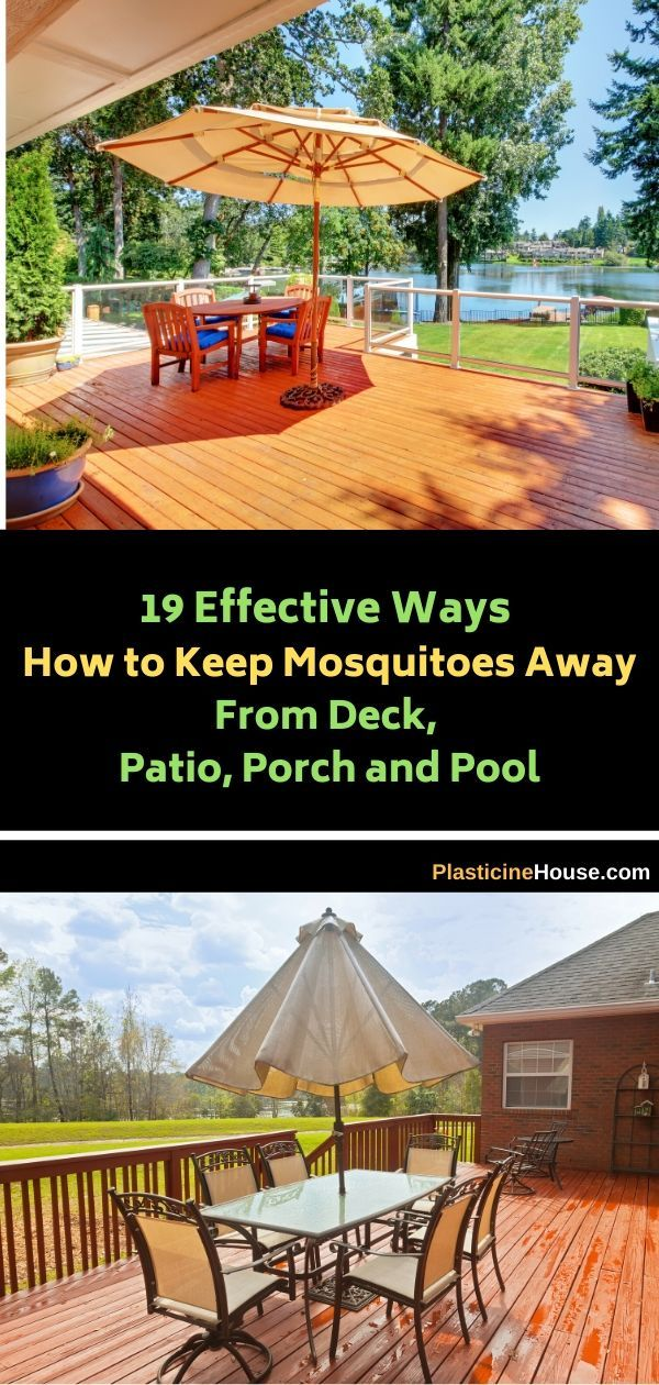 19 Effective Ways How to Keep Mosquitoes Away From Deck ...