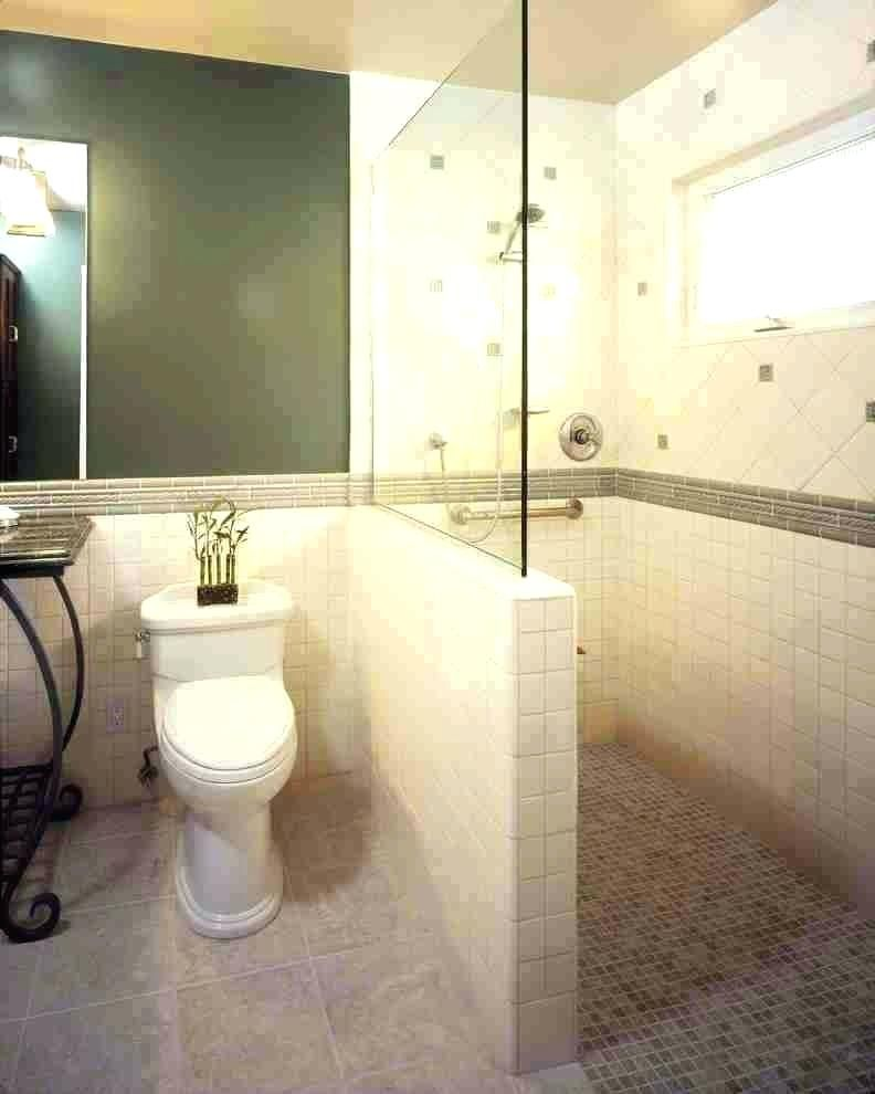 Image Result For Walk In Showers With Windows