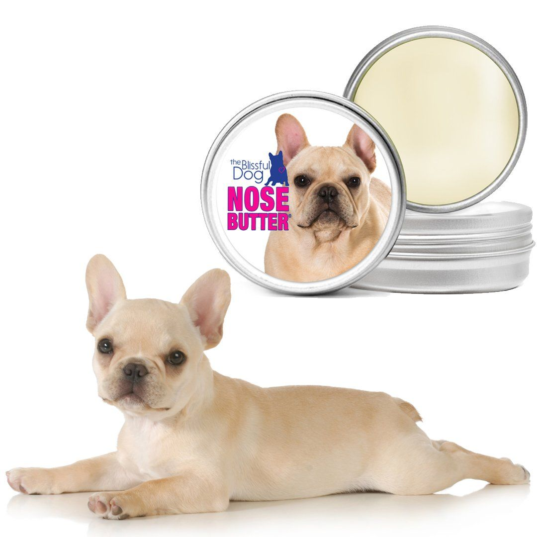 the blissful dog fawn french bulldog nose butter 2ounce -- take a