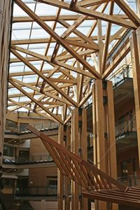 Modern Wooden Atrium Wood Structures Uses Of Wood