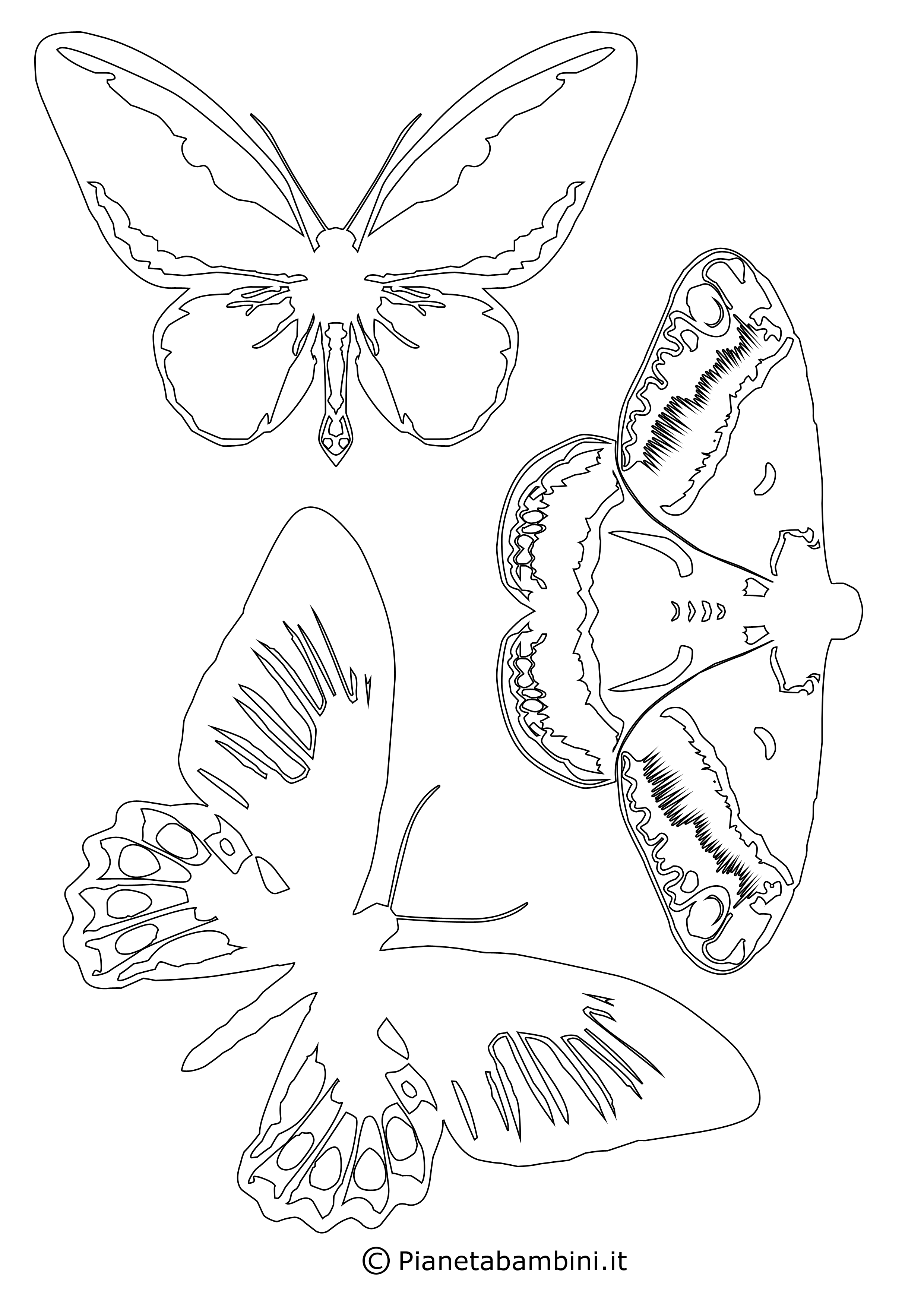 Sagome Di Farfalle Da Colorare E Ritagliare Per Bambini Stencil