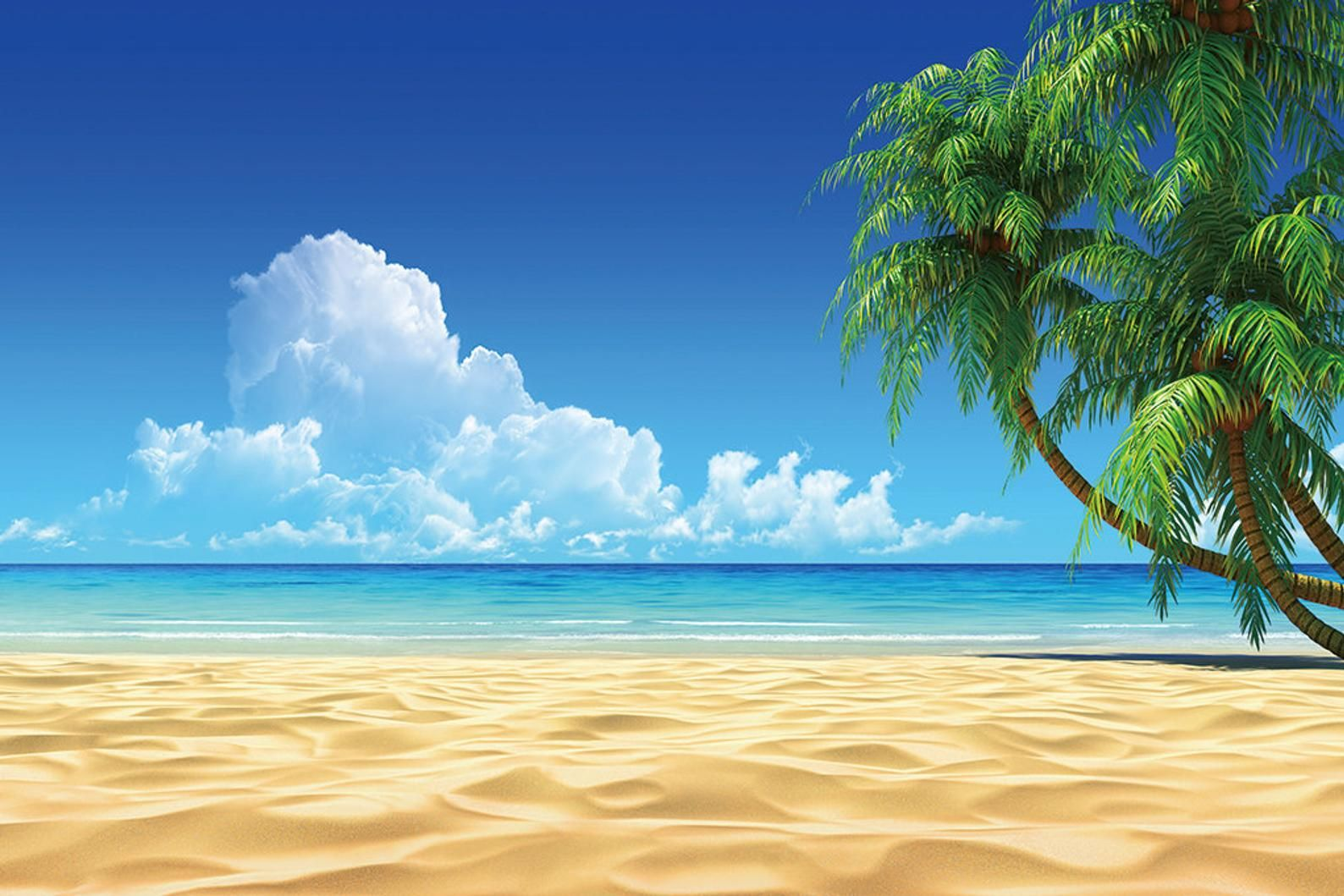 Custom E54 Wall Mural Diy Sunny Beach Wall Decor Impress Your Etsy In 2021 Beach Wallpaper Beach Desktop Backgrounds Beach Background